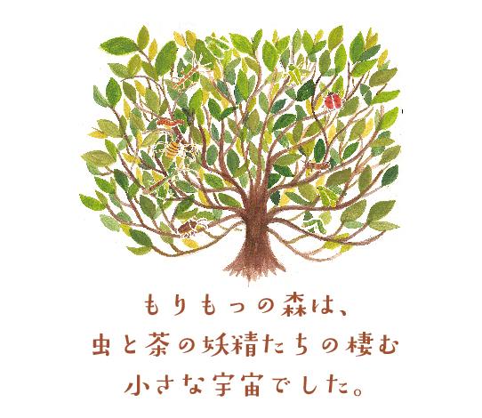 kentarocha_morinokaori-16