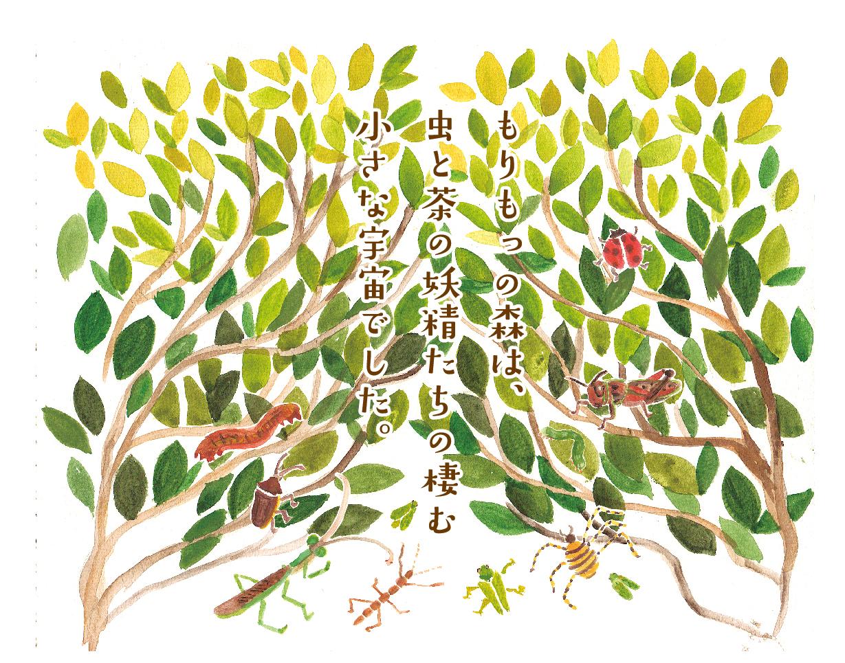 kentarocha_morinokaori-02