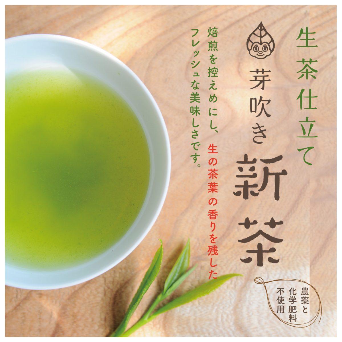 芽吹き新茶2021・ご予約承り中です!