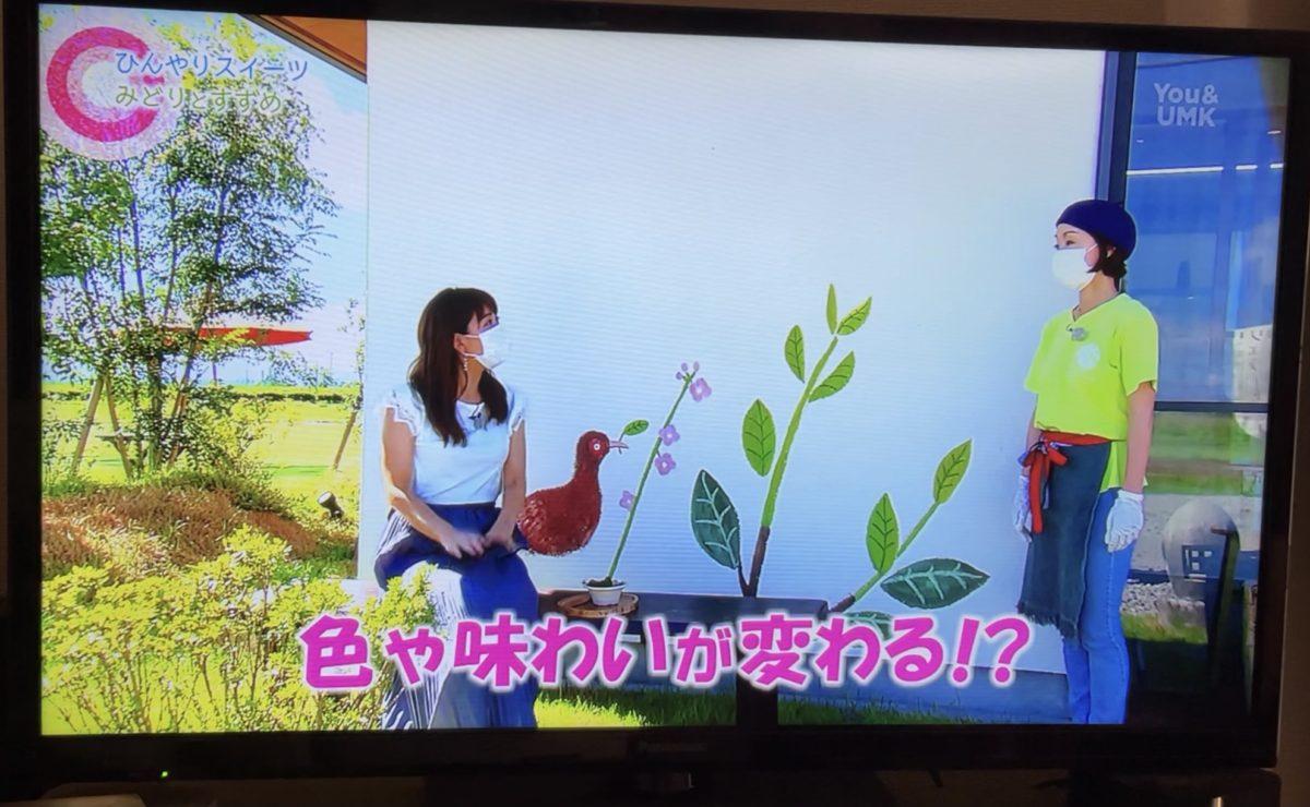 8/28 UMKテレビ U-dokiで紹介していただきました♪